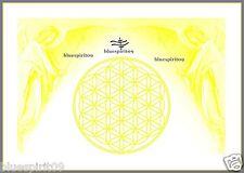 Energie Bild - Schwingungsbild - Die Blume des Lebens mit Erzengel Jophiel