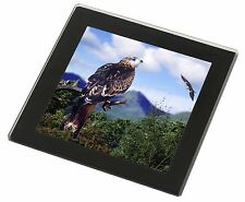 Red Kite Bird of Prey Black Rim Glass Coaster Animal Breed Gift, AB-105GC