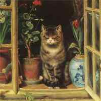 Oil painting Dozing cat in a window with flowers landscape hand painted CANVAS