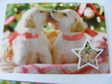 Remesa restante Tarjetas de navidad plegables Oferta especial Perro y Gato