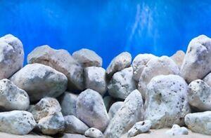 "24"" / 60cm  Tall Height New Aquarium / Vivarium Background Poster Dappled Rock"