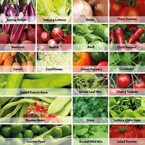 Bumper Vegetable Seeds Pack 21 Varieties Over 1700 Veg Seeds