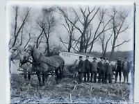 Horses Pulling Boat up Ramp c.1900 Veda Vintage Photo Dry Plate Glass Negative