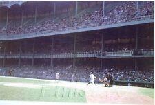 1958 YOGI BERRA NEW YORK YANKEES IN YANKEE STADIUM LASER PHOTO PRINT