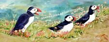 PUFFIN SEA BIRD ORIGINAL OIL PAINTING BLOCK CANVAS B SANDRA COEN ARTIST