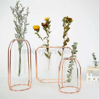 Hydroponic Flowers Plants Pot Terrarium Container Glass Vase Holder Tube Decor