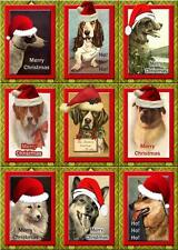Dogs In Santa Hats ~ Christmas Card Making Toppers / Scrapbooking - Gloss Finish