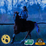 Horse Tail 100CM Blue USB Lights Chargeable LED Crupper Harness Equestrian Pet