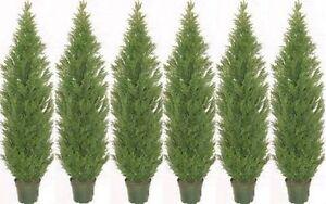 6 ARTIFICIAL CEDAR PINE OUTDOOR UV TOPIARY TREE 5' CYPRESS POOL PATIO DECK PORCH