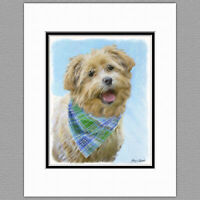 Auto combined postage Glen of Imaal Terrier Notebook By Starprint
