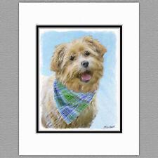 Glen of Imaal Terrier Dog Original Art Print 8x10 Matted to 11x14