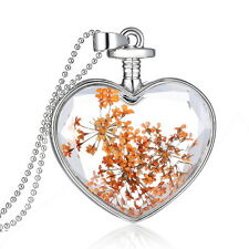 Chic Clear Glass Heart Necklace Ball Chain Dried Real Flowers Pendant Jewelry