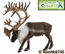 Collecta Woodland Caribou solide Jouet en plastique WILD ZOO ANIMAL CERF * nouveau 💥