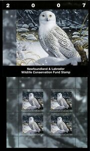NEWFOUNDLAND #14M 2007 SNOWY OWL CONSERVATION STAMP MINI SHEET OF 4 IN FOLDER