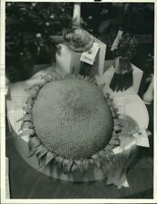 1987 Press Photo First Prize Sunflower at Camillus Mall Vegetable Show
