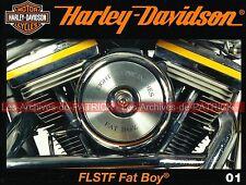 HARLEY DAVIDSON 1340 FLSTF Fat Boy 80 Arthur Terminator Arnold Schwarzenegger