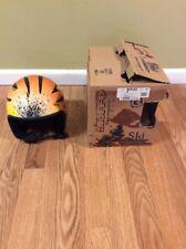 Bieffe  Reflex Sprint Tiger Ski Helmet Size Medium 54 cm 040 Rare Racing