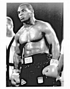 Boxing Legend Mike Tyson  LARGE  11x14 Photo #1