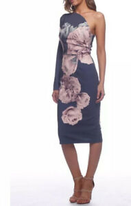 PASDUCHAS Size 6 'Juniper' Floral Fitted Midi Pencil DRESS One-Sleeve