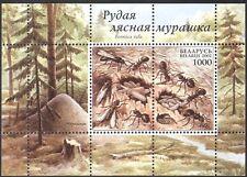 Belarus 2002 insectes/Fourmis/NATURE/FAUNE/conservation/Environnement 1 V M/S s5701