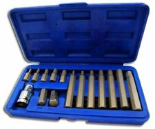 Professional 15 Piece Star Torx Bit Set with 1/2'' Drive Adapter