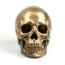 Human Skull Replica Resin Model Medical Realistic lifesize 1:1 Color Bronze