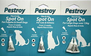 Pestroy Flea & Tick Treatment Spot On For Puppies Small Large Dogs Cat & Kitten