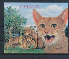 LM97155 Congo 1999 pets animals cats good sheet MNH