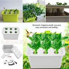 6 Holes Plant Site Hydroponic System Grow Kit Bubble Indoor Garden Cabinet Box F