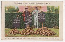 Potatoes Southwick Trowbridge Kainit Potash Salts 1907 Advert Postcard 686b