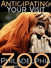 Philadelphia Pennsylvania Zoo Orangutan United States Advertisement Art Poster