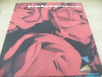 "THE DARLING BUDS SHAME ON YOU  12""  VINYL RECORD"