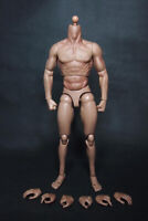 "1:6 Scale Male Muscular Man Body Doll 12"" Hot Toys Body for Male Head Sculpt"