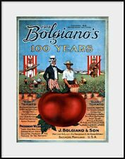 1918 Bolgiano's Glory Tomato Brochure, WWI Patriotic, NEW Fine Art Giclee Print