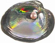 Palau 2013 Pink Pearl Oyster III Convex 5 Dollars Colour Silver Coin,BU