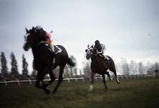 1973 Eddie Maple SECRETARIAT Canadian International Horse Racing 8x10 Photo