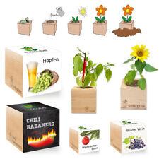 EcoCube - verschiedenen Pflanzen // Aufzuchtset, Samen, Geschenkidee, Holzwürfel
