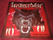 Leatherwolf - Endangered Species [Heavy Metal America] (1985 LP Ex. Vinyl)