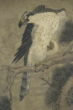 "Japanese Hanging Scroll Art Painting ""Hawk"" Asian antique #E4528"