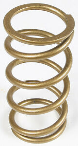 Steel 210135-013 Team Industries Polaris Primary Clutch Springs