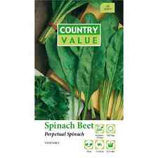 Country Value Perpetual Beet Spinach Vegetable Seeds