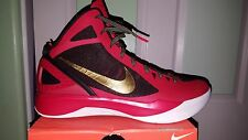 DS SAMPLE NIKE ZOOM HYPERDUNK MIKE MILLER P.E. LEBRON MIAMI HEAT FINALS PROMO