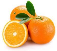 Pegatina adesivi adhesivo sticker coccion autoadhesiva habitacion naranja