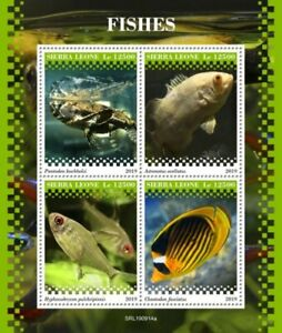 Sierra Leone - 2019 Fishes on Stamps - 4 Stamp Sheet - SRL190914a