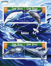 Fish & Marine Animals
