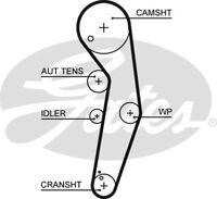 Gates Timing Cam Belt 5569XS  - BRAND NEW - GENUINE - 5 YEAR WARRANTY