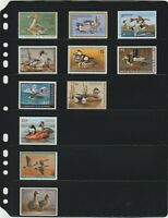 ANCHOR 50 New Stock Pages 6S (6-Rows) Stock Sheets/ Black sheets +FREE SHIPPING.