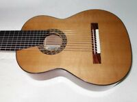 SALE PRICE Cathedral Guitars Model 125 Classical 10-String Harp Guitar, w/Case!!