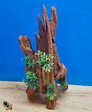Aquarium Ornament Driftwood Tall Log Wood Plant Decoration Cave Hide Fish Tank