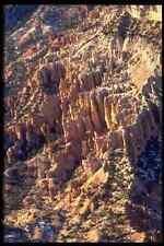 316082 órgano Pipa A4 Foto Impresión
